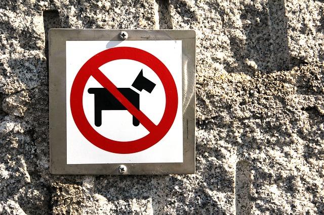 Forbudt med hund skilt