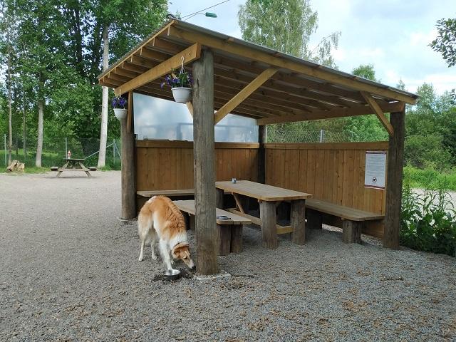 Gapahuken i hundeparken på Gulset