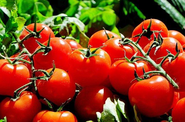 Klase med tomater